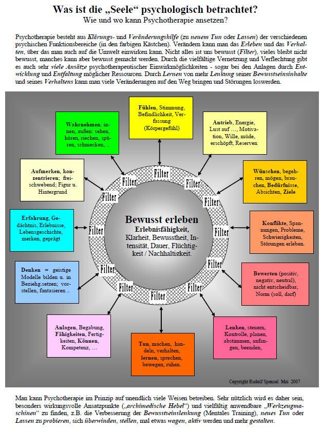 Neurowissenschaftliche Psychotherapieforschung - Eine kritische Analyse